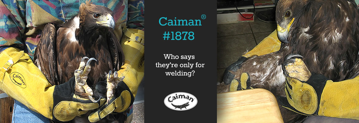 Caiman® #1878 - Who says they are only for welding?
